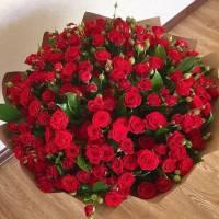Большой букет 51 красная кустовая роза R012