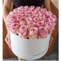 51 нежная розовая роза в коробке R011