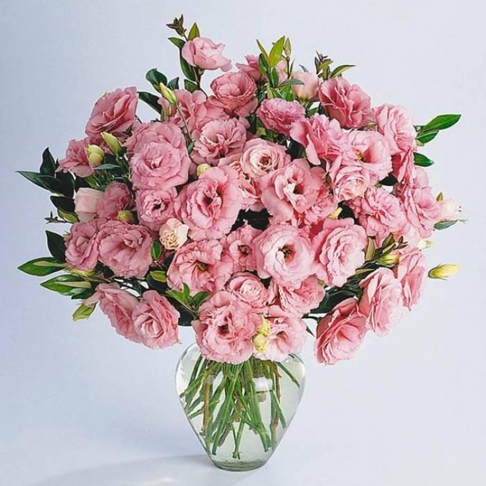 Букет 31 ветка розовой эустомы R011